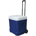 Where to rent Cooler 60 Qt. in Delano MN